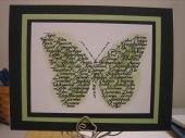 1_butterfly_green_and_black.jpg