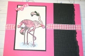 Flamingoes with shades on by