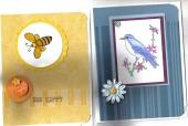 bird_bee_wings_swap_2.jpg