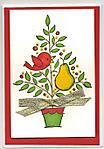 Christmas_Pear_Tree_Card_edited-1.jpg