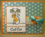 Cool Cat by