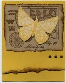 Yellow Butterfly by