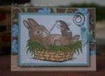 Bunny_Boo_Boo_1-07_Jovi.JPG
