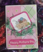Mothers day for MIL by