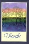 Thanks Reflection Card by