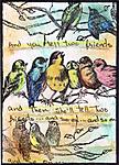bird-atc-copy-3.jpg