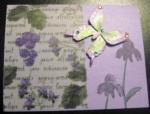 IAP10_3D_Butterfly_Card.jpg