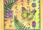 butterfly_ipa10_300.jpg